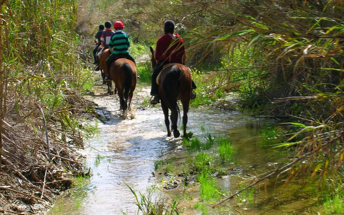 Horse Riding Acivities in Paphos Cyprus