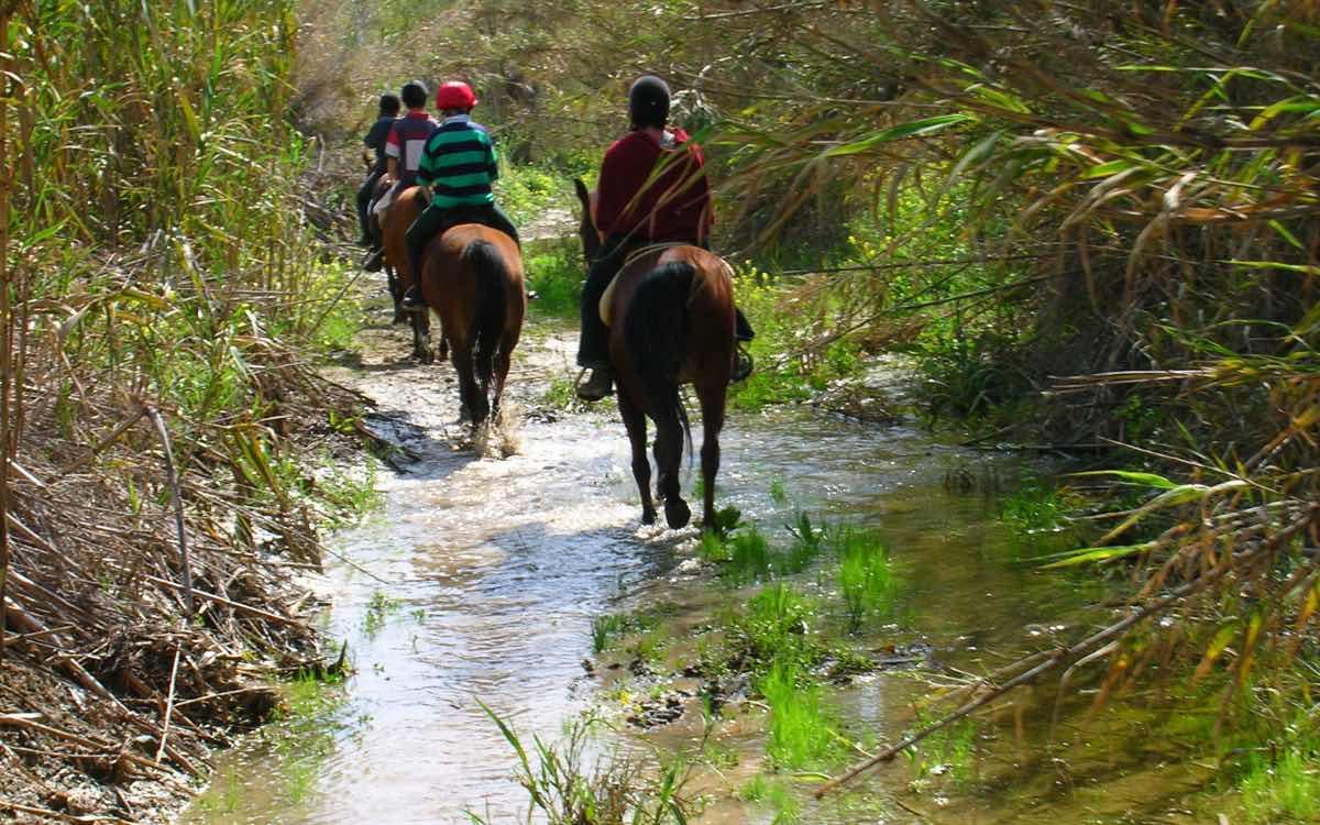 Horse Riding Acivities in Paphos Cyprus